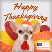 Happy Thanksgiving Day at American Mutt USA